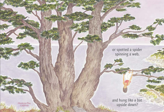 "Pages 8-9 from the book ""Just Like Me Climbing a Tree"", by Durga Yael Bernhard"